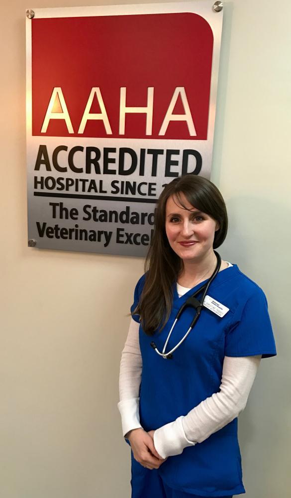 Veterinarians & Staff | Bellerose Animal Hospital, Bellerose, NY